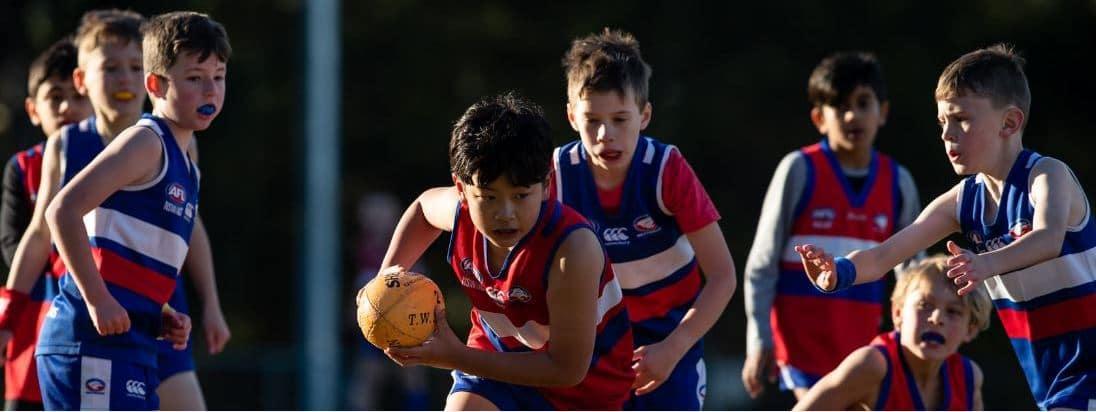 North-Rocks-Junior-AFL-Club-Sydney